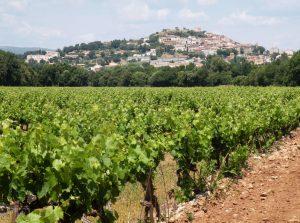 De wijvelden van vignobles Ravel met in de verte Pierrefeu-du-Var